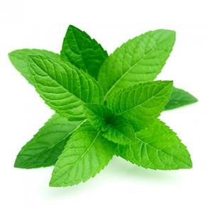Menthol og Mint e-juice